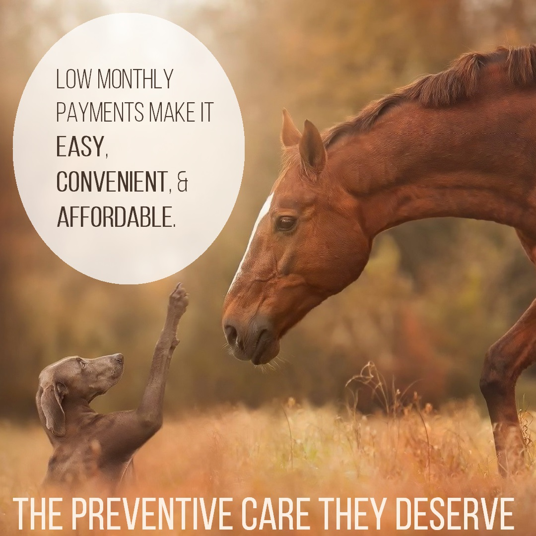 The Preventive Care They Deserve